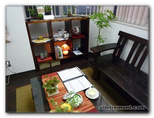 Дизайн в японському / східний стилі