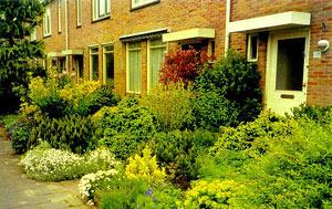 Як зробити голландський сад