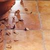 Типи керамічної плитки